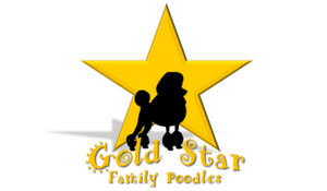 Gold Star Family Poodles gold and black logo
