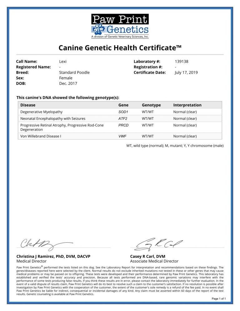 Lexie Health Certificate