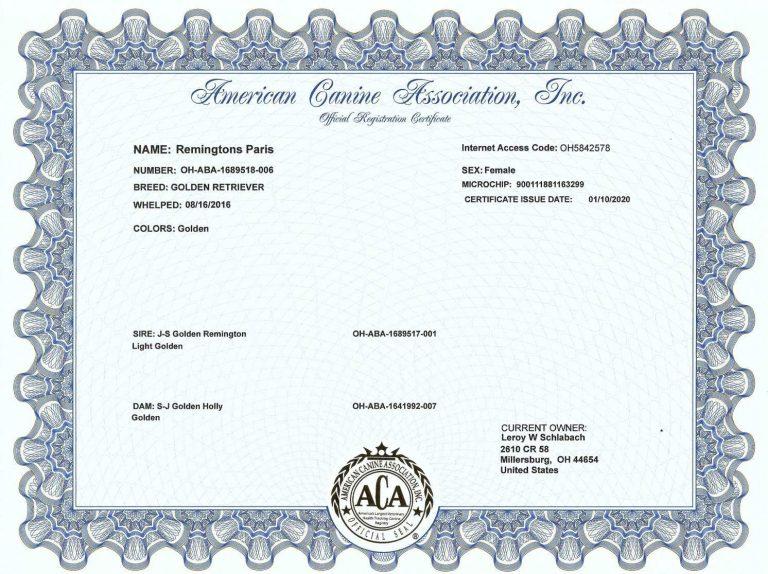 Paris ACA papers reduced